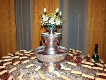wedding champagen fountain cost