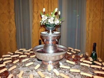 wedding champagen fountain cost