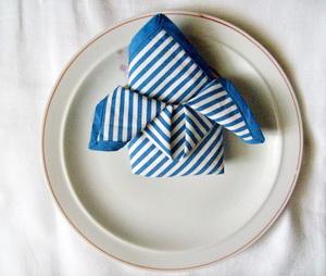 Butterfly Napkin Folding