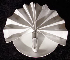 Folding napkins with rings