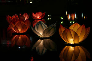 Floating flower lanterns
