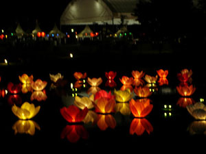 Floating-flower-lanterns-