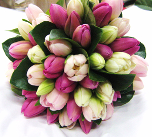 Flowers and Personality - tulips