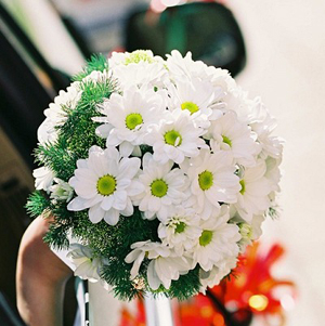 Flowers and Personality- white daisy