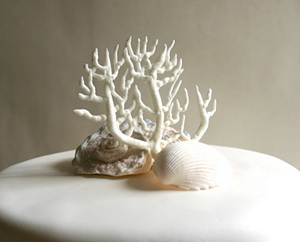 edible fan coral cake topper