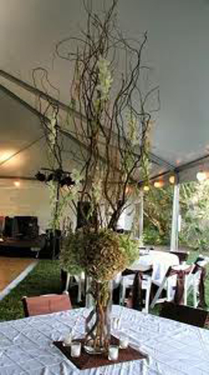 natural-wedding-centerpieces-branches