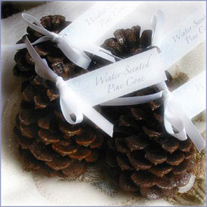 unique-place-card-holders-fir-cones