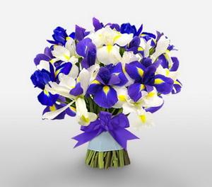 iris as winter wedding flowers